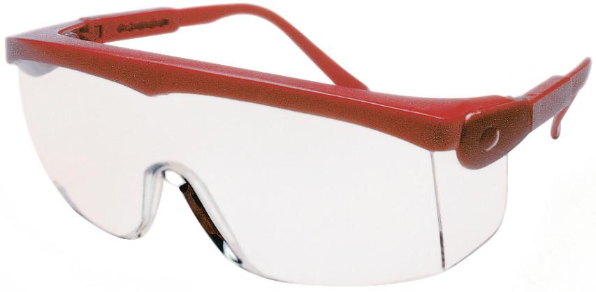 12ST MSA Veiligheidsbril Perspecta 1070 heldere pc